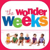 不思議な週齢ワンダーウィークス:TheWonderWeeks