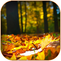 Autumn Morning Wishes Images icon