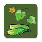 Vegetable Doctor icon