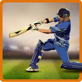 CricAstics 3D Multiplayer Cricket Game