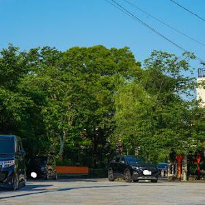ルーミーカスタムのカスタム事例画像 絶望ビーリーさんの2021年05月31日08:27の投稿