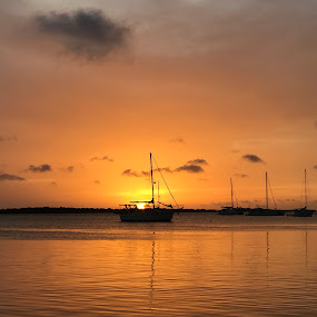 Silhouette Sunset by Susan D'Angelo - Landscapes Sunsets & Sunrises ( clouds, water, waterscape, silhouette, sunset, sea, scenic, boat, golden, caribbean,  )