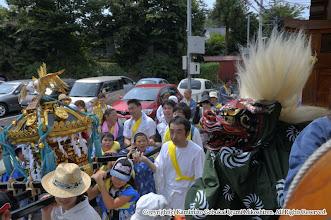 Photo: 【平成24年(2012) 本宮】  山車を追い抜く小人神輿。獅子が担ぎ手の子供たちを鼓舞する。