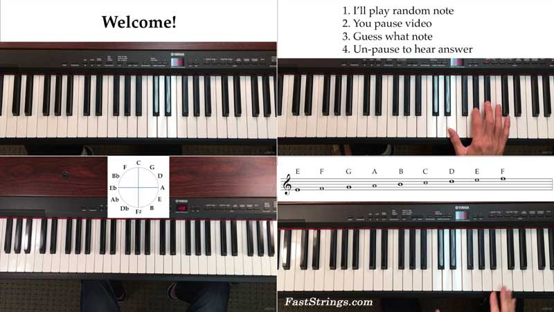 The Complete Piano & Music Theory Beginners Course