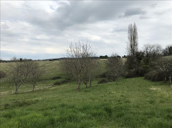 terrain à Tocane-Saint-Apre (24)