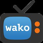 wako 3.3.3