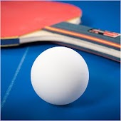 Ping Pong Table Tennis Pro