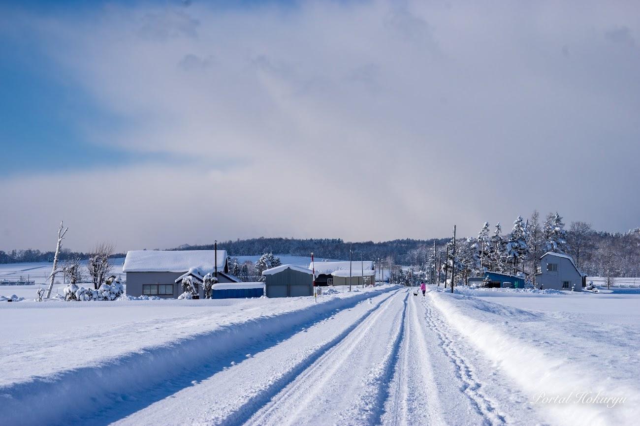 雪の農道を散歩する人