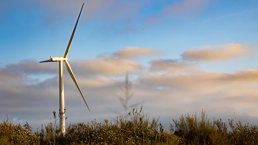 Jeffreys Bay Wind Farm, one of the largest wind farms in South Africa.