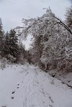 Photo: Tento rok sme zimné táborenie na Kňažinových lúkach trošku posunuli na skorší termín a dobre sme urobili, čaká nás pravá januárová zima. Hore stúpam Čerešňovou dolinou z Uhrovského Podhradia