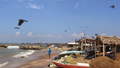 Photo: Negombo - (c) wsylvie.free.fr 2015