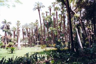Photo: #004-Les jardins du palais Manial au Caire