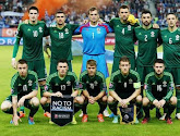 Groupe F: l'Irlande du Nord persiste et signe