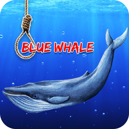 Guide For Blue Whale