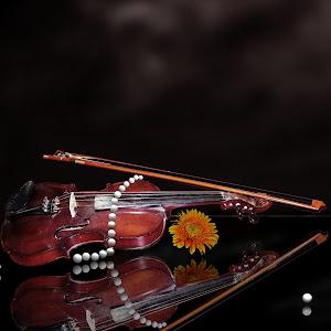 Violin Pearls.jpg