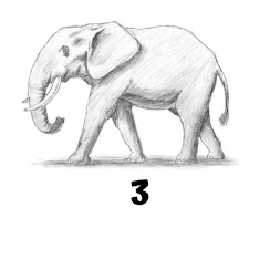 How to draw elephant step by step free APK screenshot thumbnail 5