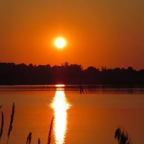 Sunset by Chris Clay - Landscapes Sunsets & Sunrises ( lake zorinsky )