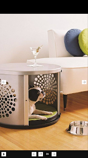 Dog Room Design screenshot