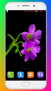 Download Purple Flower Wallpaper For PC Windows and Mac apk screenshot 4