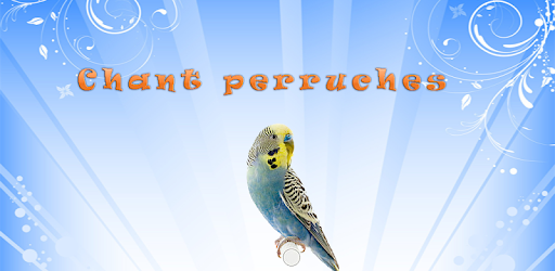 Budgies Song - Apps on Google Play