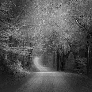 GA Back Roads 2 BW.jpg
