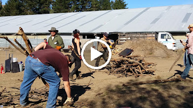 Video: Peter Hirst discusses fine points of the biochar conservation burn and how to use a bucket loader to make properly aerated piles of vineyard prunings for top-lit burns.