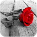 Photo Art - Color Effects icon