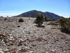 Photo: Another view south from the summit of Dawson Peak toward Mt. Baldy