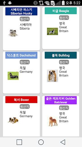 개정보 한국인이 좋아하는 반려견 정보