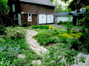 Photo: Eco-friendly can and SHOULD be beautiful! Grassless gardens mean less pollution and gravel driveways help rain infiltrate.