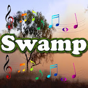 Best Swamp Sounds