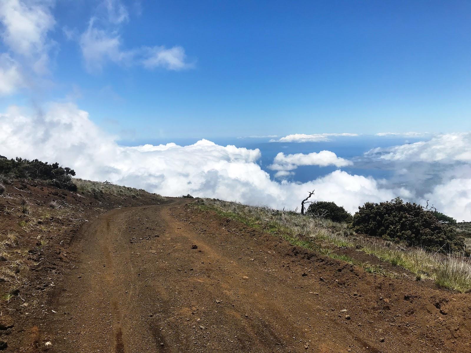 Cycling Skyline Trial to Haleakala