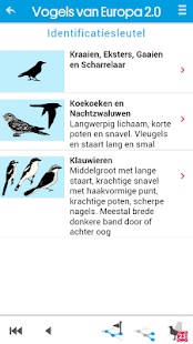 Vogels van Europa- screenshot thumbnail