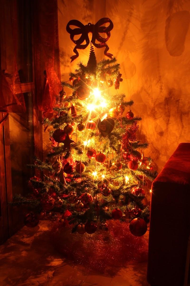 Caldo Natale di Zagor70