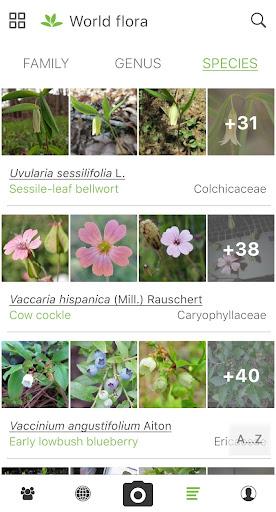 PlantNet Plant Identification 3.0.7 screenshots 4