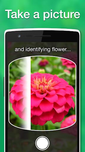 LikeThat Garden -Flower Search