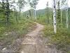 USA Alaska Itinerary 7 Days // Denali National Park Hiking Trail