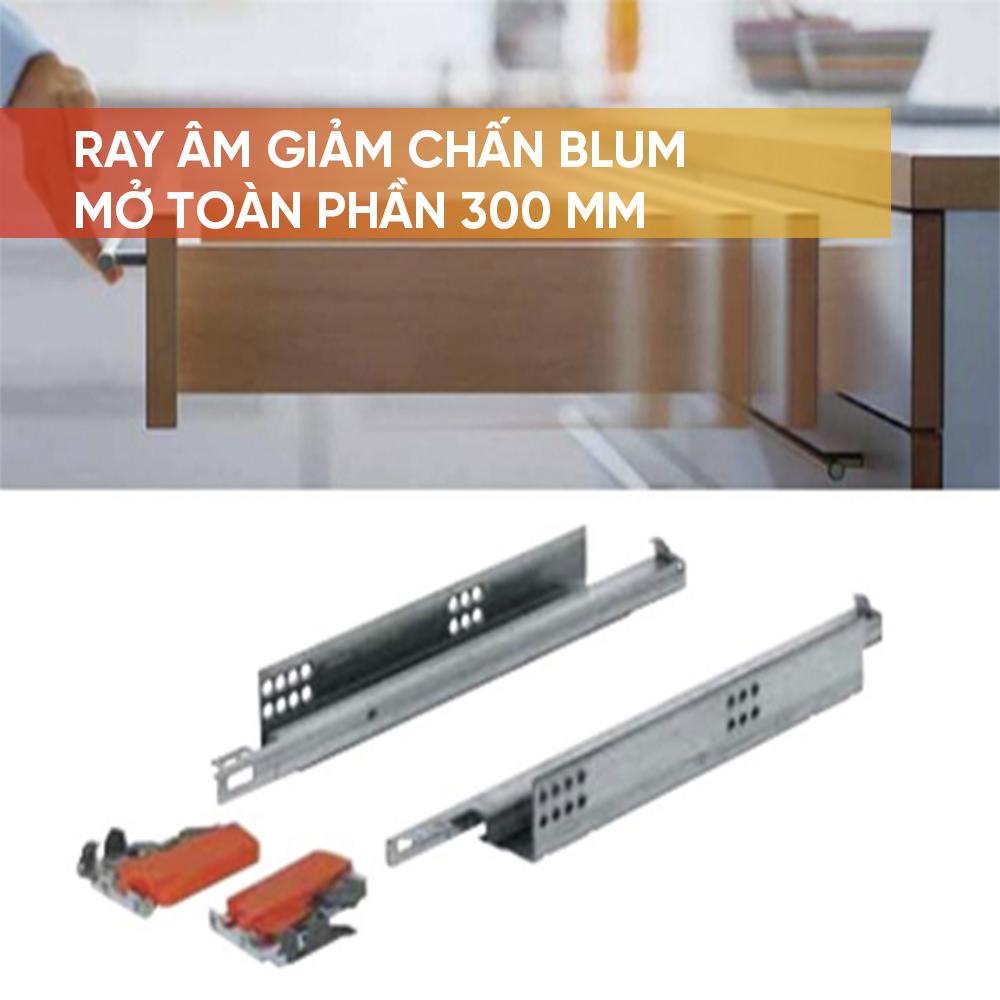 Ray âm Blum giảm chấn mở toàn phần 300mm- 423.54.730