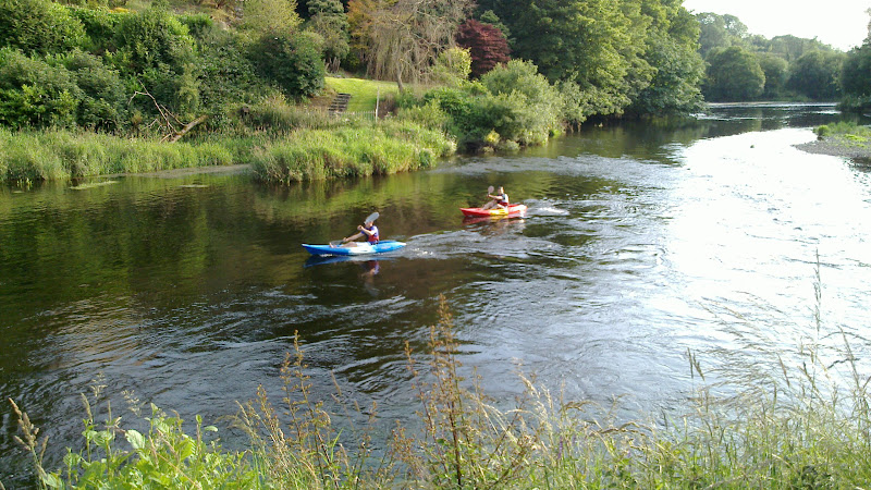 Photo: Kayaks on the Lee River, Ballincollig Cork