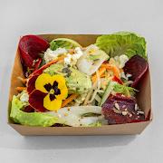 Raw Garden Salad