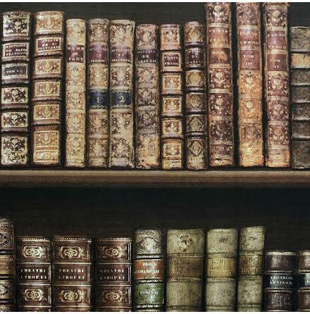 Tapet med antika böcker från Direct Wallpaper  575208