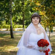 Wedding photographer Sergey Nebesnyy (Nebesny). Photo of 24.10.2016