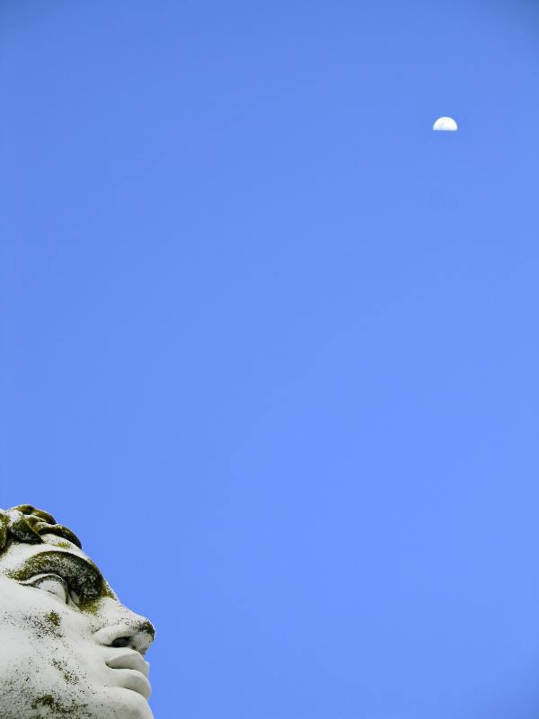 La Statua e la Luna di Davide Vitali