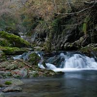 Piccola cascata nel mezzo della natura di
