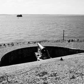 by Pustiu Marian Catalin - Black & White Landscapes (  )