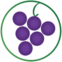 Wines Til Sold Out  (WTSO) icon