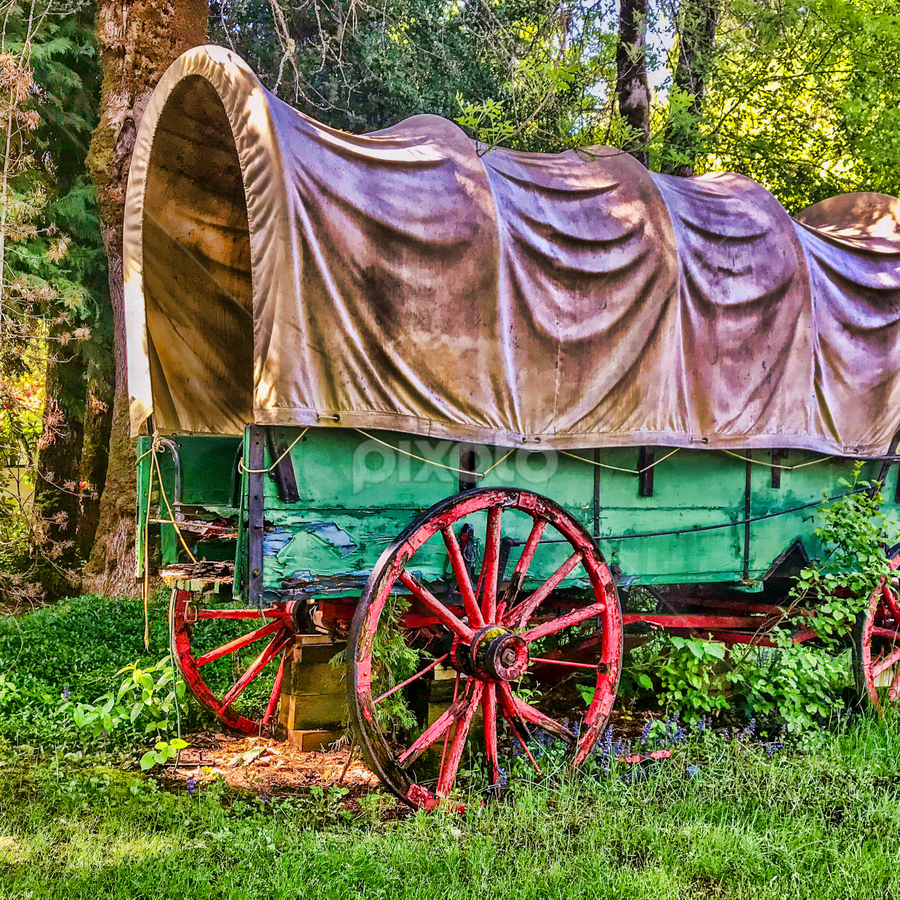 by Judy Rosanno - Transportation Other