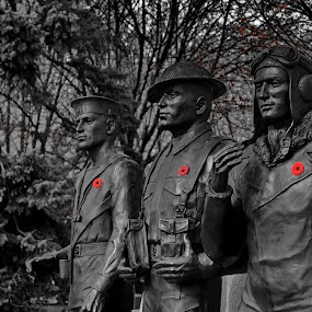 We Remember by David Clare - Buildings & Architecture Statues & Monuments ( cenotaph, rememberance day, statue, canada, brantford, military,  )