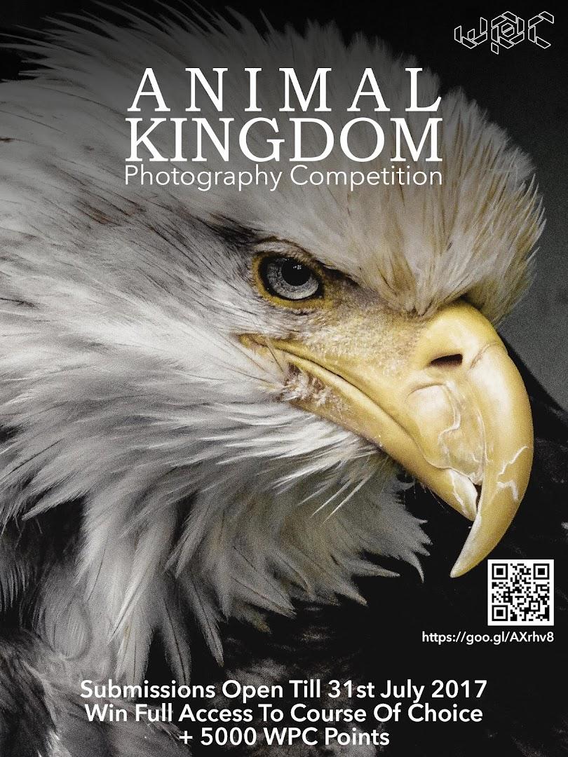 Competition Animal Kingdon