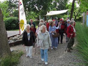 Photo: Spaziergang im Solegarten